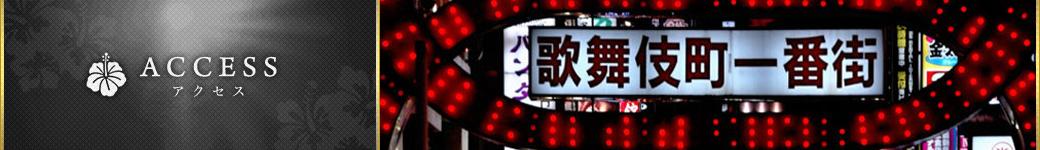 新宿アジアンエステ・Crystal/アクセス